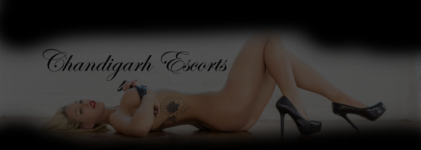 chandigarh escorts call girls